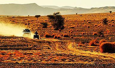 Mitsubishi Team w Rajdzie Dakar